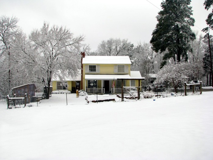 snowday10 046